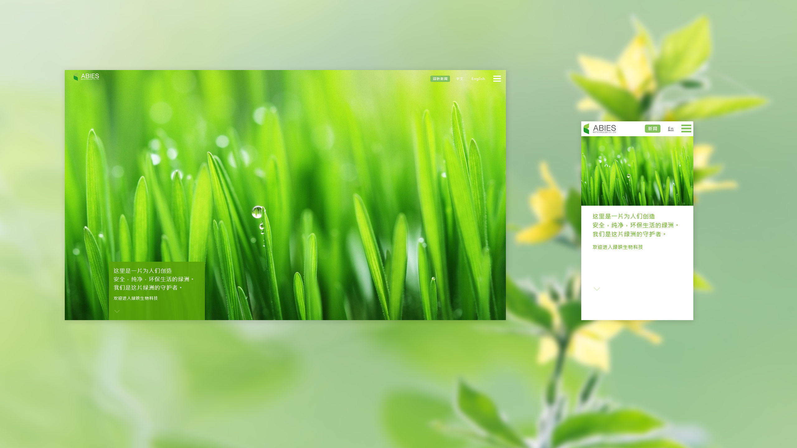 ABIES上海綠映品牌形象網站